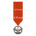 AIR FORCE COMBAT ACTION MEDAL MINIATURE SIZE