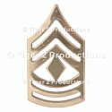 1st SERGEANT (ARMY) NO-SHINE PAIR
